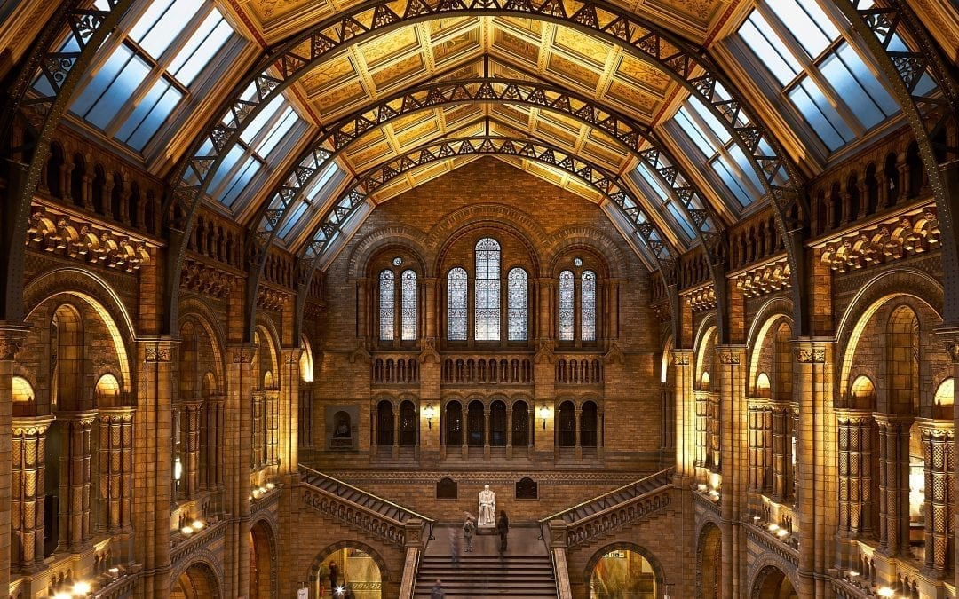 BOSS Controls helps Museums and Galleries throughout the UK protect valuable Objects and Artifacts