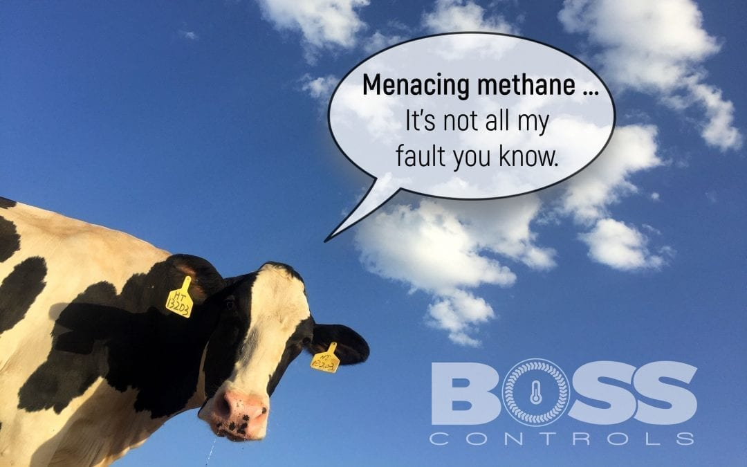 Menacing methane – methane is a greenhouse gas thirty times more potent than carbon dioxide